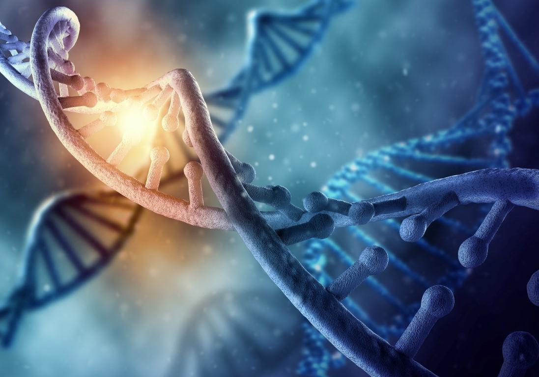 Kết quả hình ảnh cho medicina regenerativa con celulas madre