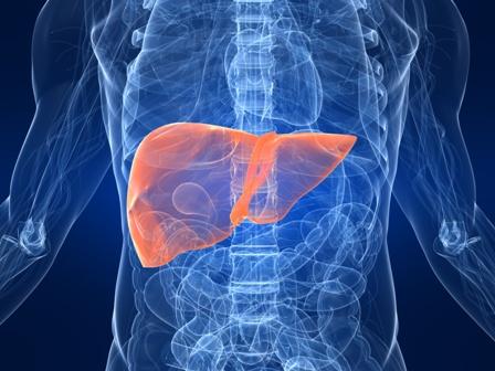 Разница между гепатитом и вич