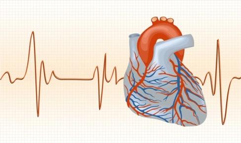 Кардиологические клиники в Германии занимаются проблемами сердца